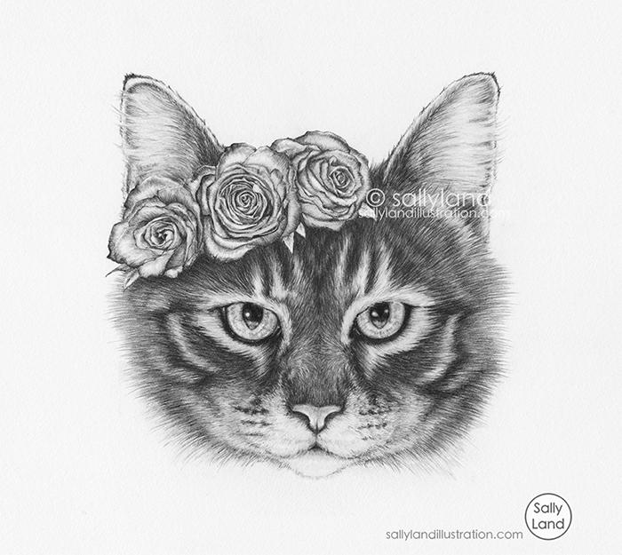 Rosie - kitty, cat, tabbycat, meow - sallyland   ello