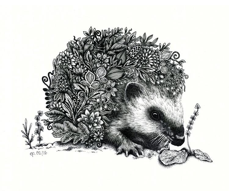 flowery hedgehog. cutie - illustration - ellenparzer | ello
