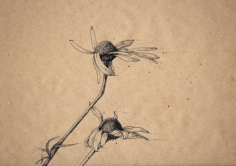 Wind 2 - illustration, drawing, art - aleksklepnev   ello