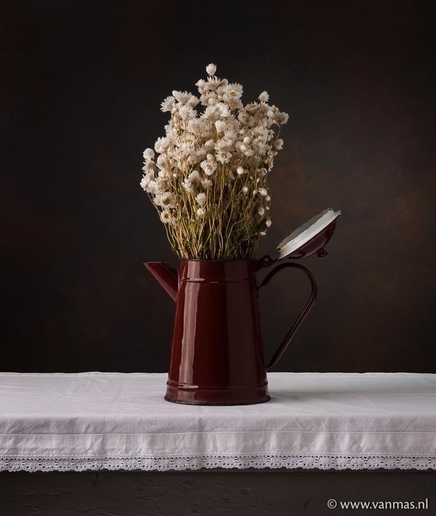 Stilleven met margrieten - photography - vanmas | ello