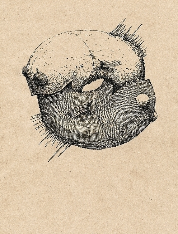 Tai Chi - art, illustration, taichi - aleksklepnev | ello