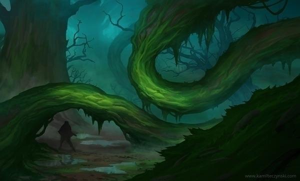 Forest - environment - kamilteczynski | ello