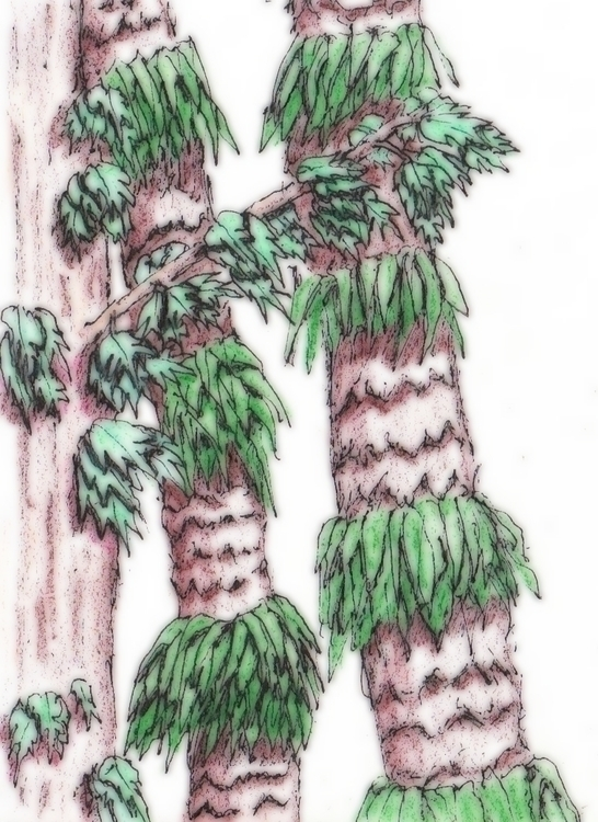 Trees - illustration - cheechwiz   ello