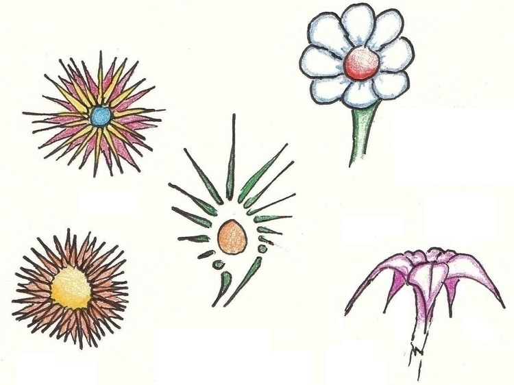 Study Flowers - illustration - cheechwiz   ello