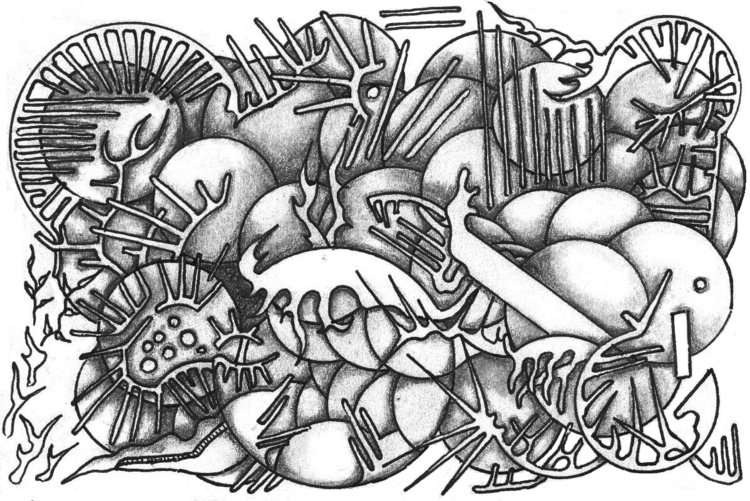Orbs - illustration - cheechwiz | ello