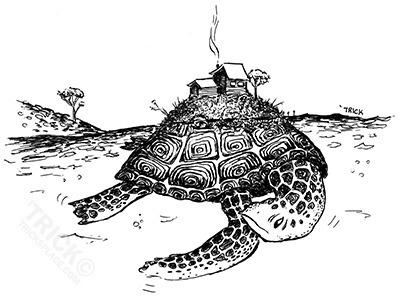 Turtle Island - turtle, island, turtleisland - trick-6303 | ello