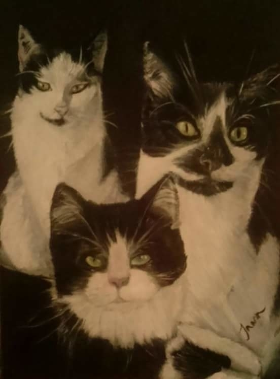 Black white cats touch green A4 - foxyjo | ello