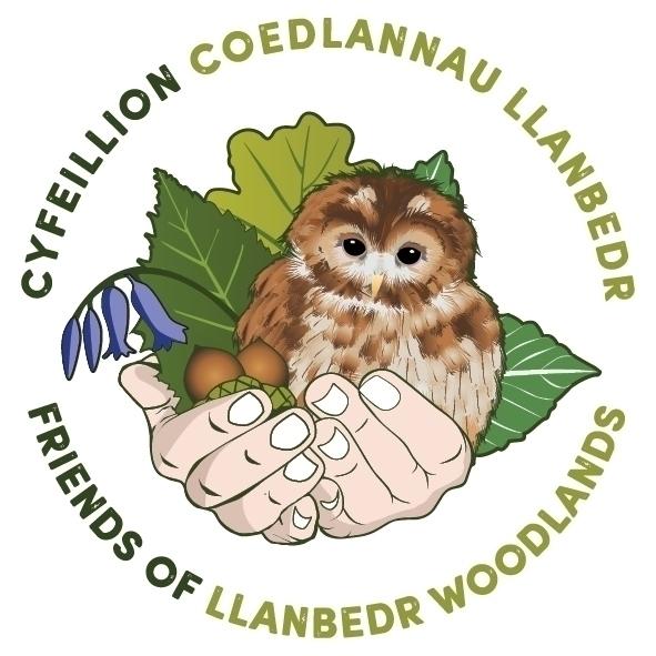 Friends Llanbedr Woodlands Logo - mccoolecreative   ello