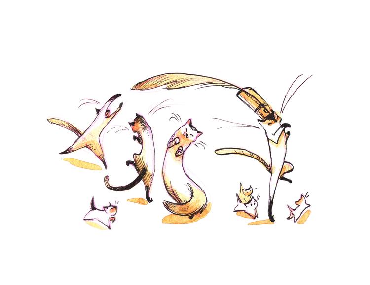 Cat Parade - cats, penink, caseyrobin - caseyrobin   ello