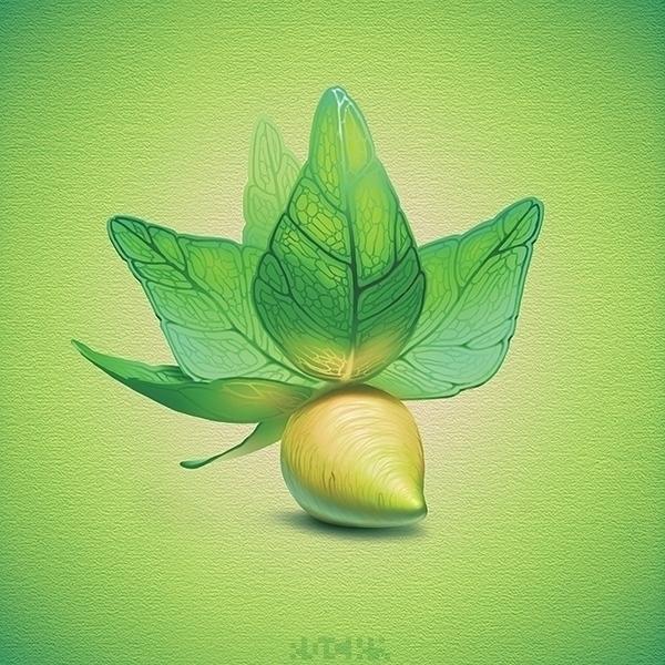 Plants - original illustration  - rocky-1221 | ello