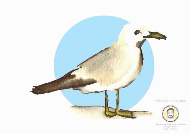 Seagull Birds project created i - whistlingbear | ello