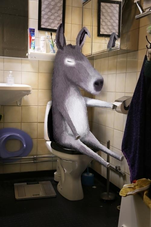 ass, animal, toilet - skuggan | ello