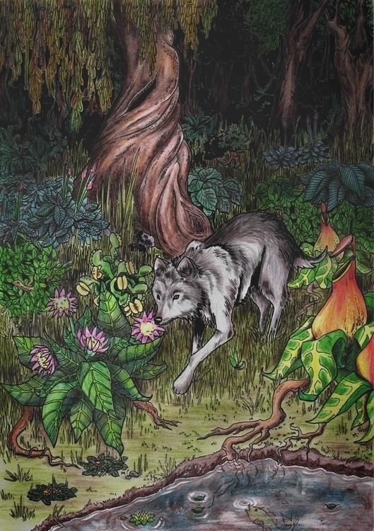 illustration, drawing, wolf, nature - pegasoul | ello