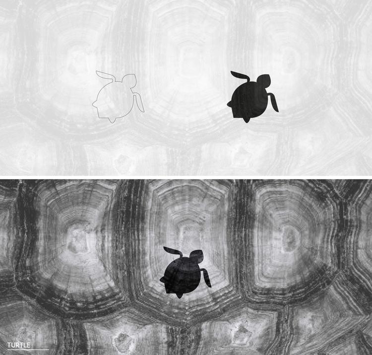 turtle - illustration, characterdesign - julls_cutepunk | ello