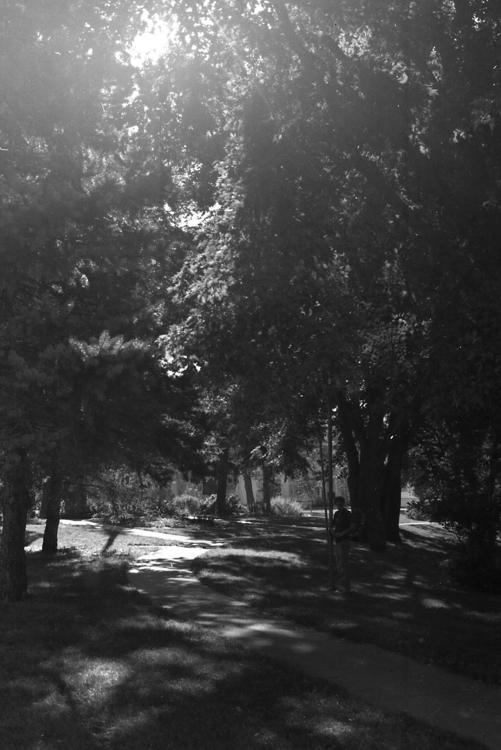 35mm canon film photography - filmphotography - meganschuver | ello