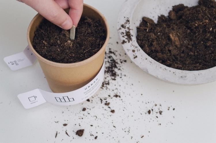 DRINK IT_PLANT discover rhoeco  - rhoeco_fineorganicgoods | ello