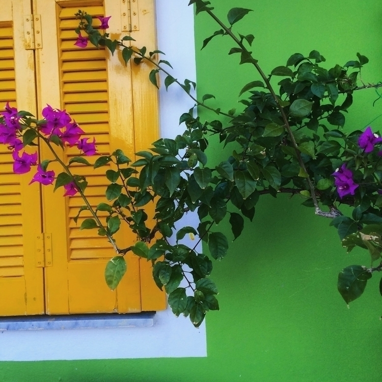 greece, colors - mauspaiva | ello