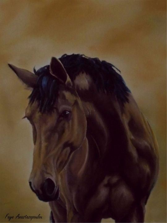 horse, wildlife, animal, equine - fayeanastasopoulou   ello