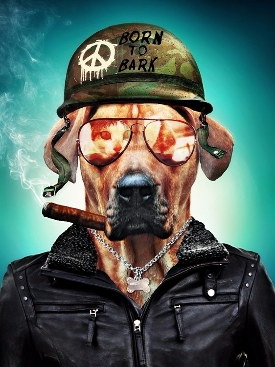 Born Bark - nicoezm, dog, fullmetaljacket - nicoezm | ello