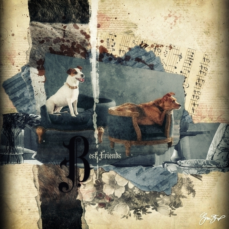 Friends - collage, mixedmedia, dogs - ginastartup | ello