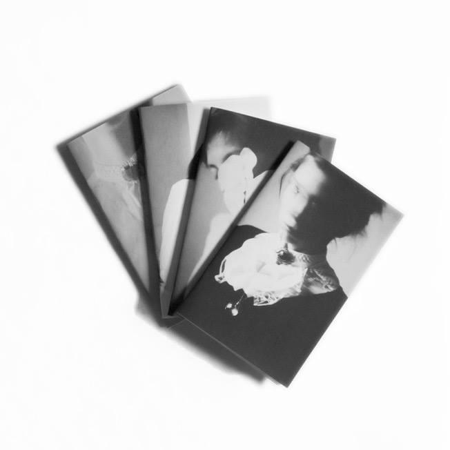order notebooks - corpus_vertebrae | ello