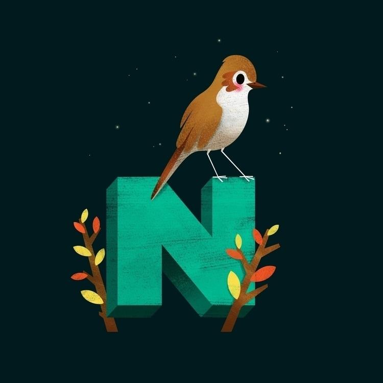Nachtigall (germ. Nightingale)  - johannaspringer | ello