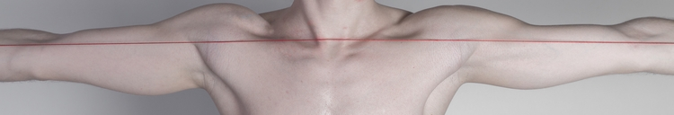 Linearity studies human body pa - cibiscuit | ello