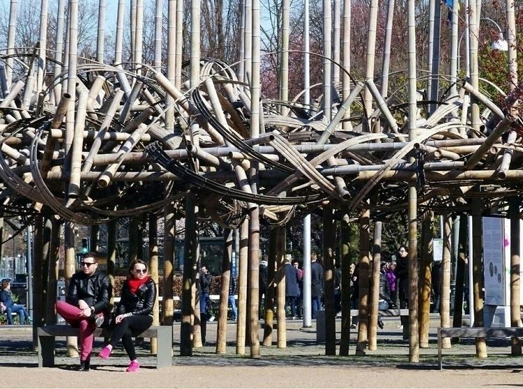 complicated. Bamboo sculpture s - thesupercargo | ello