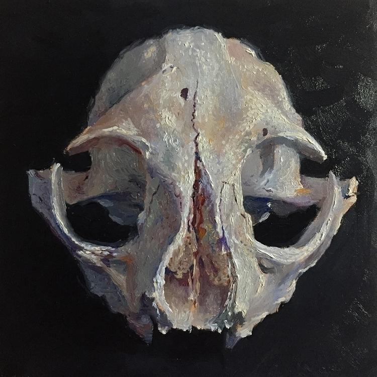 5 bobcat skull painting. Oil pa - nathanreidt | ello
