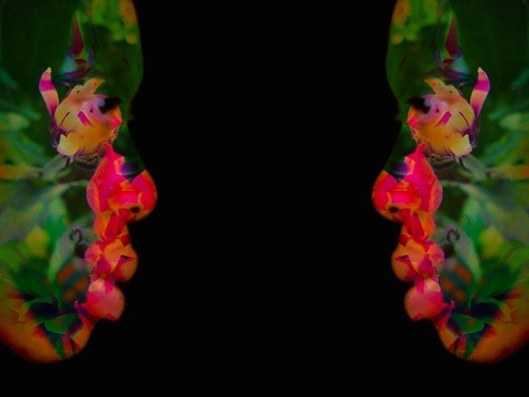 Petals Mind ~visual art - photography - cylindergallery   ello