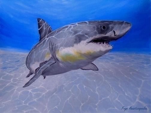 shark, underwater, ocean, art - fayeanastasopoulou | ello