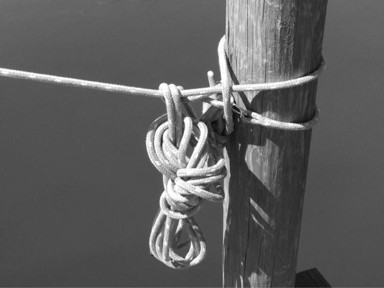 Dock Apps - mikefl99, ello, ipodphotography - mikefl99 | ello