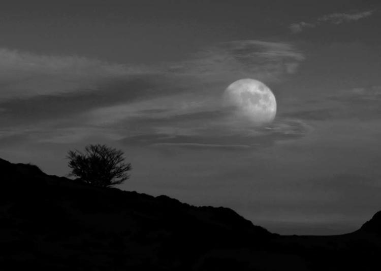 Full Moon - guillermoalvarez   ello