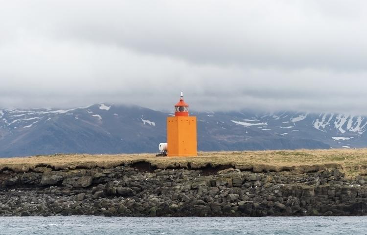 puffins Iceland - danielkrieger | ello