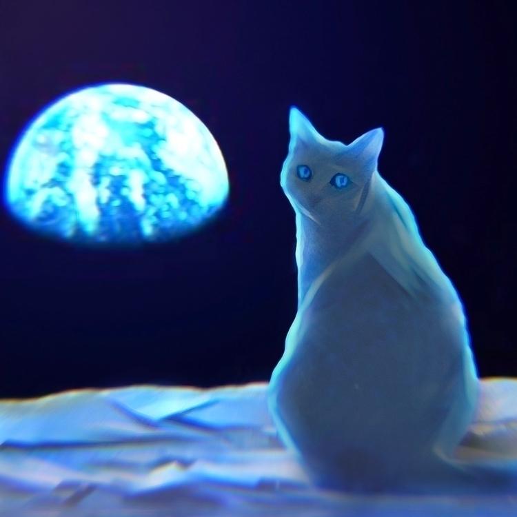 space, catnip, electriccatnip - electriccatnip | ello