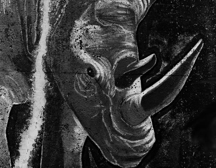 Rhino - Lost artwork Nr.3 railw - junwin | ello