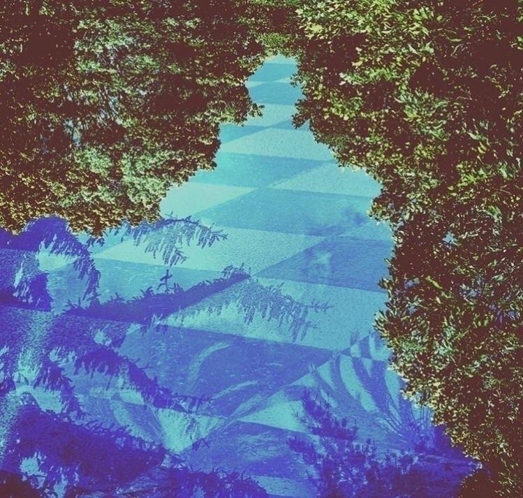 pattern, image, weird, cool, nature - mishanich | ello