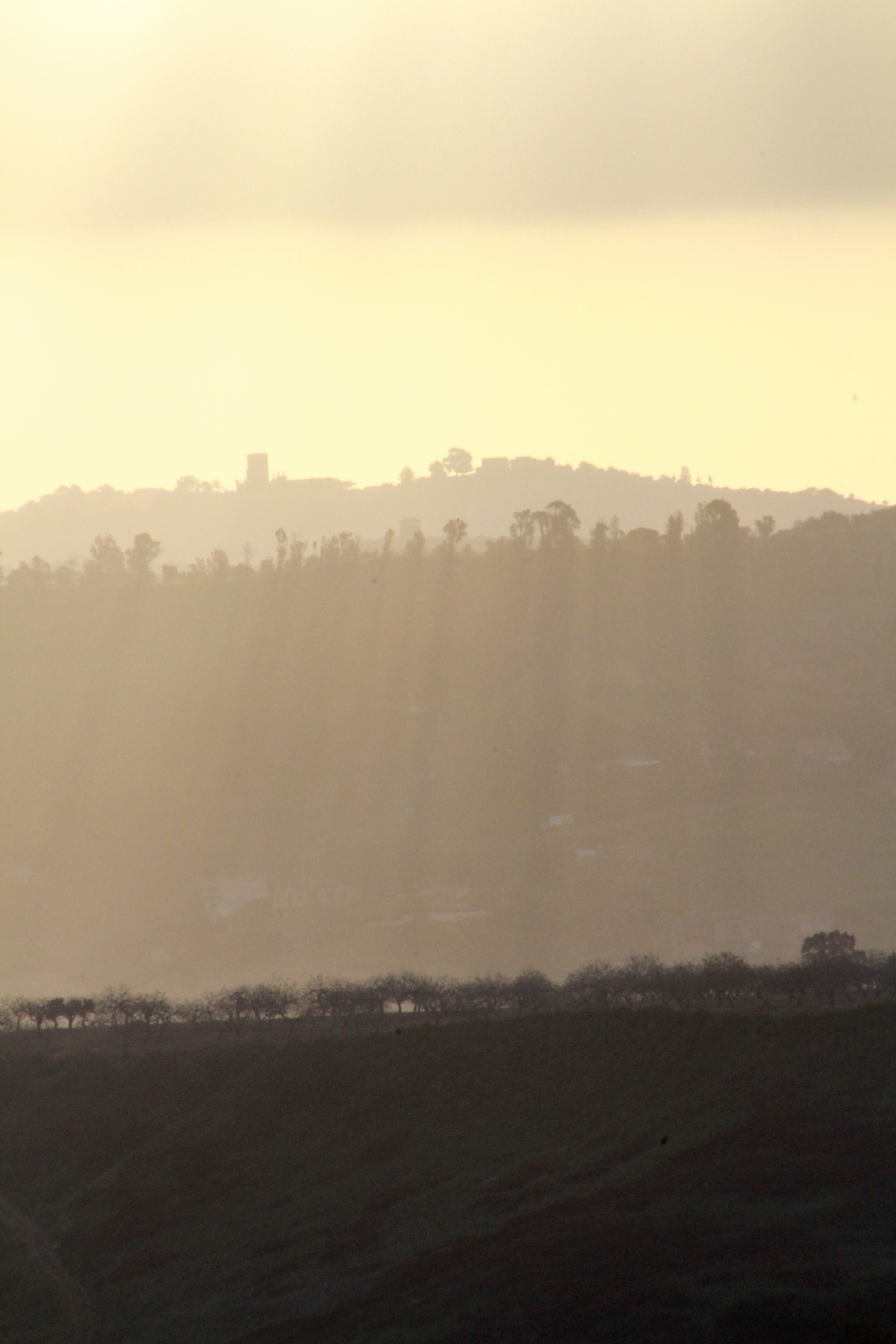 Sunrise Valley Temples - Agrigento - genevievemaynard   ello
