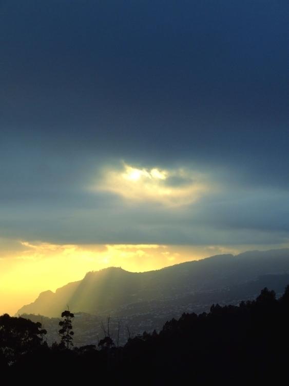 Madeira - euric | ello