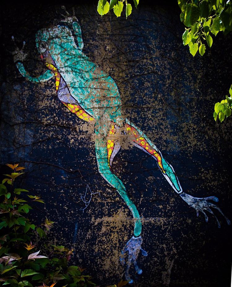 Amphibian - Lost artwork Nr.6 f - junwin | ello