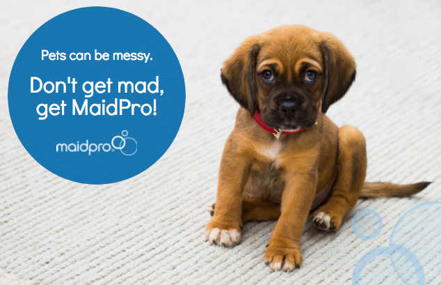 MaidPro premier house cleaning  - maidprolakenorman | ello