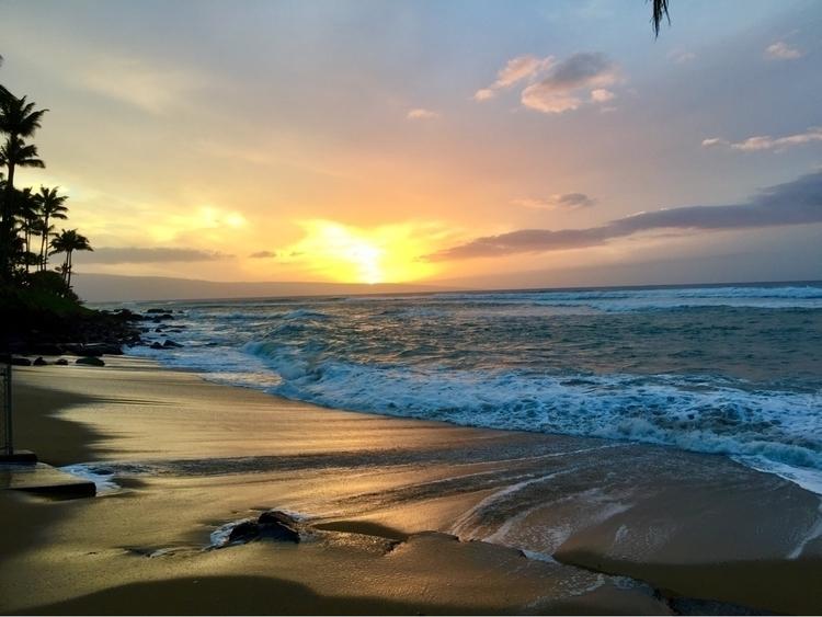 Maui 2017 - boomhood | ello