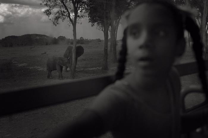 Parque Zoologica Nacional, La H - spirithom | ello