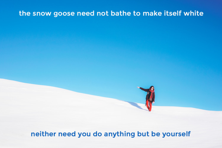 snow goose bathe white. - Lao T - quotes | ello