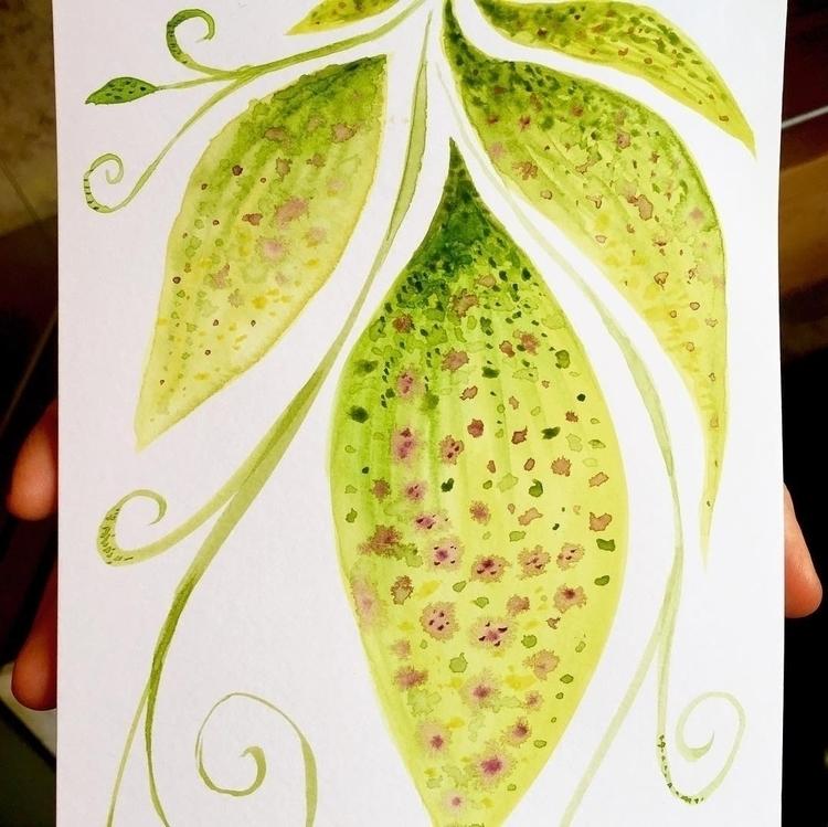 Green leaves invisible jungle - illustration - borianag | ello