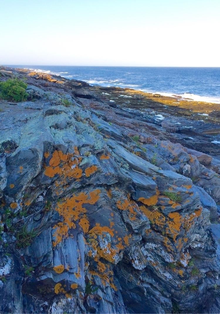 Maine - 2016 - boomhood | ello