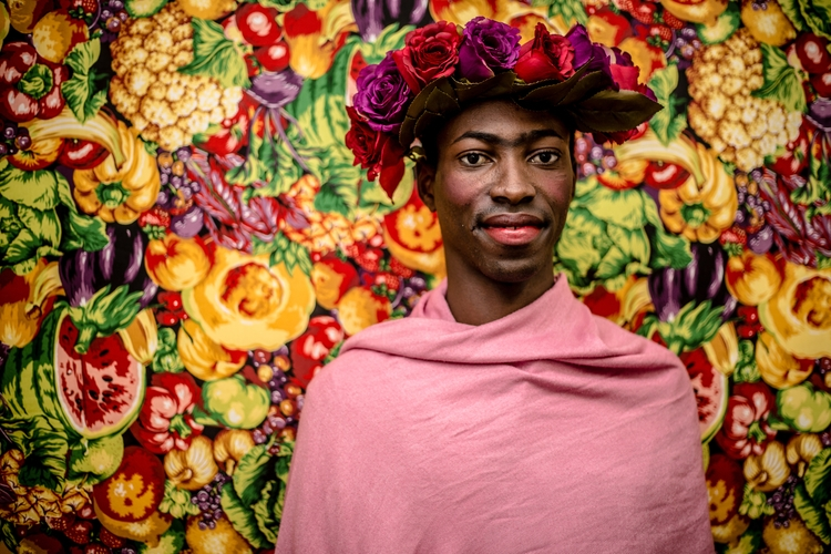 Todos Podem Ser Frida, Livro Tr - camisfontenele | ello