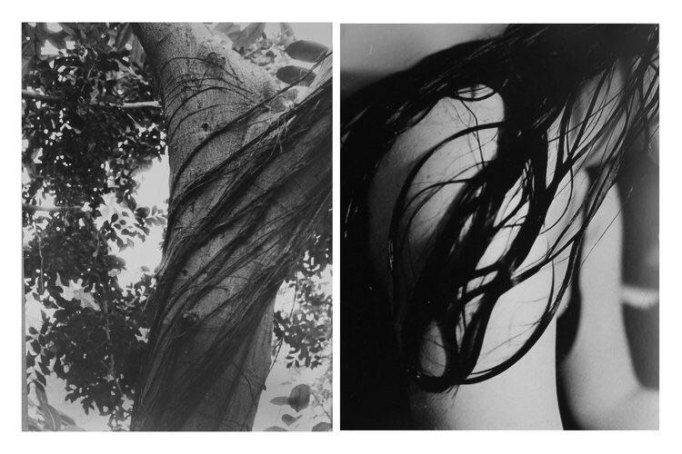 Nature Nurture, 35mm, 2015. Nat - natashazeta | ello
