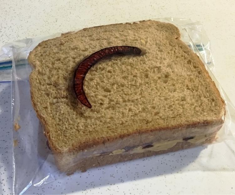 bread bubble - worm, sandwichbagart - drlaferriere | ello