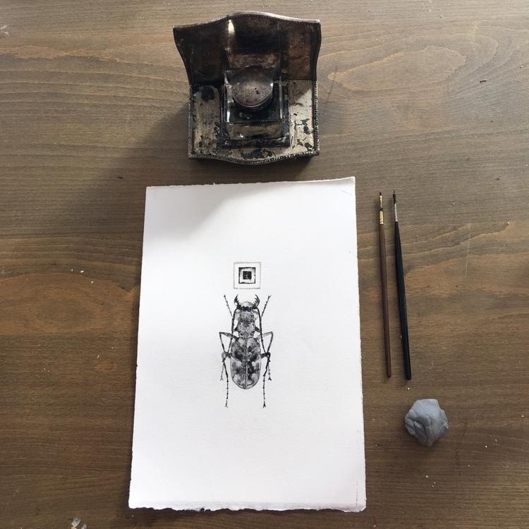 beetle - art, painting, worksonpaper - alexakarabin | ello